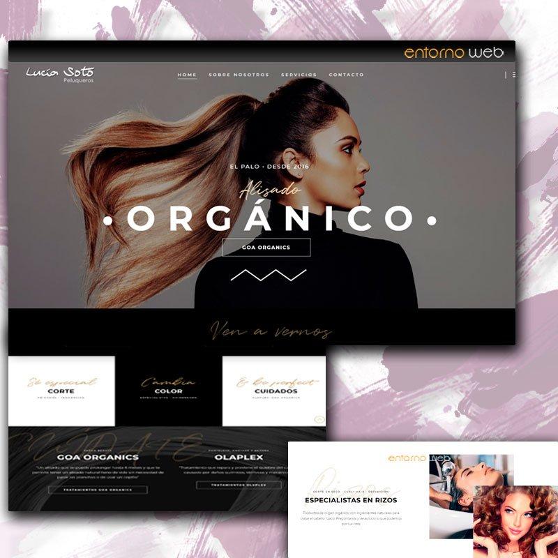 Desarrollo web - Lucia Soto